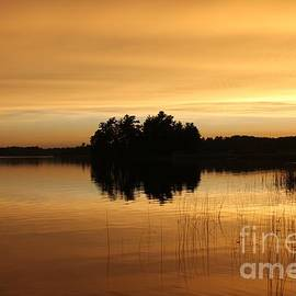 Golden Summer Night Minnesota by Ann Brown
