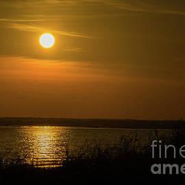 Golden Sun by Linda Howes