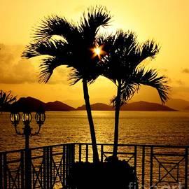 Golden Sunrise by Charlene Cox