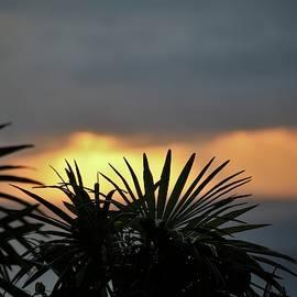 Golden Storm Sunrise by Heidi Fickinger