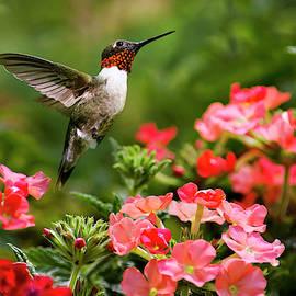 Graceful Garden Jewel by Christina Rollo