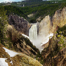 Grand Canyon of Yellowstone by Maggie Brown