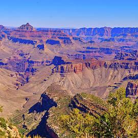 Grand Canyon South Rim by Cathy P Jones