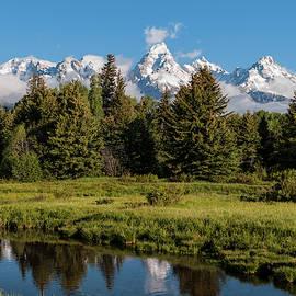 Grand Teton Reflection - Grand Teton National Park Wyoming by Brian Harig