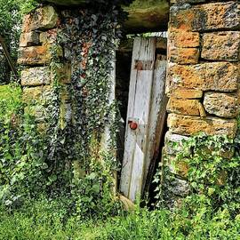 The Old Root Cellar by Randall Dill