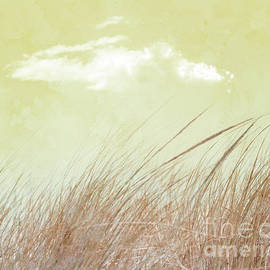 Grass and Sky 2 by Hal Halli