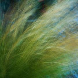 Green Tall Grass in the Wind by Yulia Kazansky