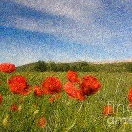 Grassland And Red Poppy Flowers 3 by Jean Bernard Roussilhe