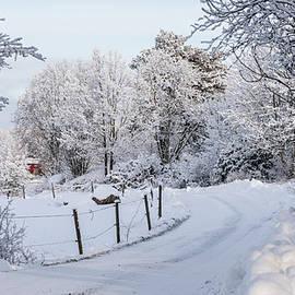 Gravelled road in winter by Torbjorn Swenelius