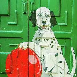 David Smith - Grean Door with dog in Arica Chile