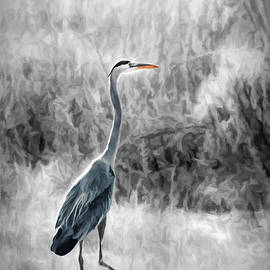 Great Blue Heron Watching by Gabriele Pomykaj