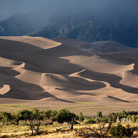 Great Dunes by Charlotte Schafer