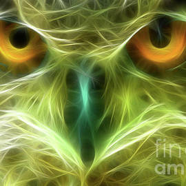 Great Horned Eyes-02211-Fractal4 by Gary Gingrich Galleries