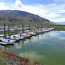 Great Salt Lake State Marina by Lyuba Filatova