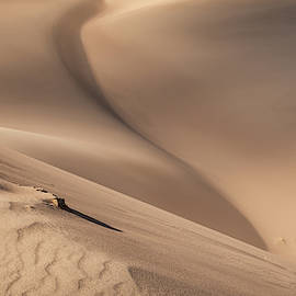 Great Sand Dunes National Park by Brenda Jacobs