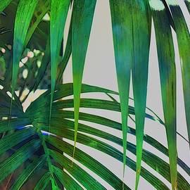Green Fan Water Colour by Loretta S
