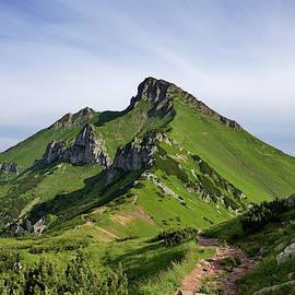 Green mountain by Ren Kuljovska