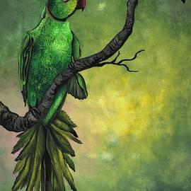 Green ring -necked parrot by Tara Krishna