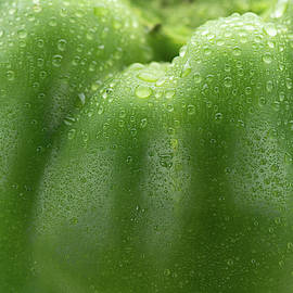 Green Pepper Skin by Steve Gadomski