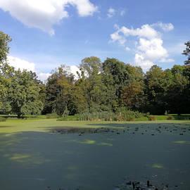 Green Pond by Piotr Dulski