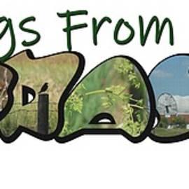 Greetings From Nebraska Big Letter by Colleen Cornelius