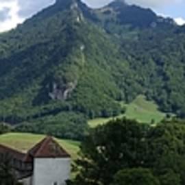 Gruyere Switzerland by Patricia Caron