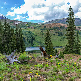 Guanella Pass Private Lake by Lorraine Baum