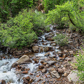 Guanella Pass Waterfall by Lorraine Baum