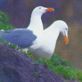 Gulls on Haystack Rock by Claudia O'Brien
