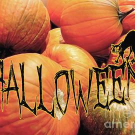 Halloween  by Jasna Dragun