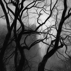 Phill Doherty - Halloween Trees