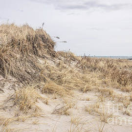 Hampton sand dunes by Claudia M Photography