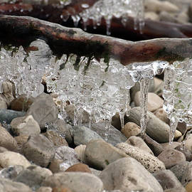 David T Wilkinson - Hanging Ice Forms on Stone Beach