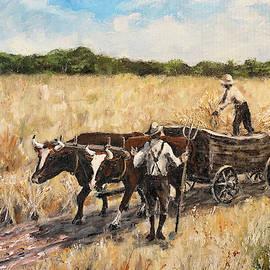 Harvest by Alan Lakin