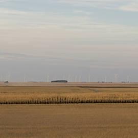 Harvesting Deere by Dylan Punke
