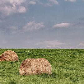 Hay bales on a hillside by Sean Sweeney