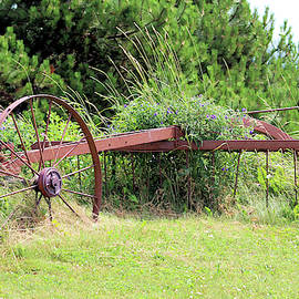 Hay Rake by Buddy Brackett