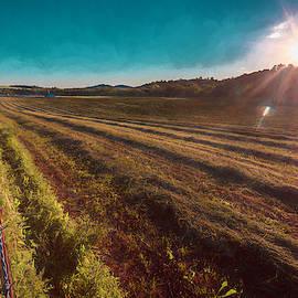 Hayfield Sunset by Jim Love