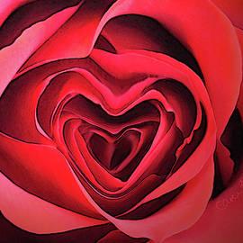 Heart of My Heart by Carel Schmidlkofer
