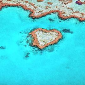 Heart Reef by Aaron Foster