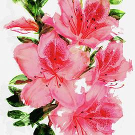 Her favorite bouquet - DWP2082042 by Dean Wittle