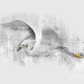 Heron No 01 by Mia Stedt