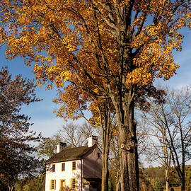 Denise Harty - Hibbs House in Autumn