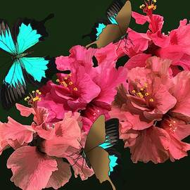 Hibiscus Butterfly Joy by Joan Stratton