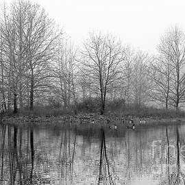 Hidden Island Black And White by Steve Gass