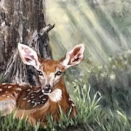 Hidden Deer by Sheila Tysdal