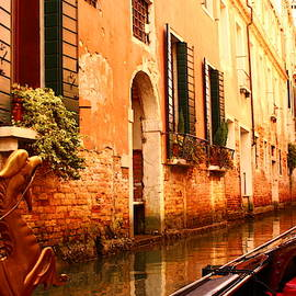 Hidden Venice by Loretta S