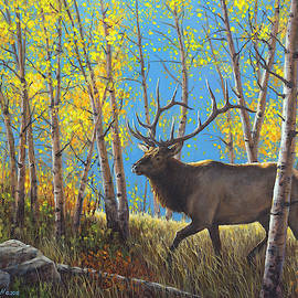 High Country Royalty by Kim Lockman