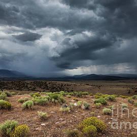 High Desert Storm Clouds 2 by Webb Canepa
