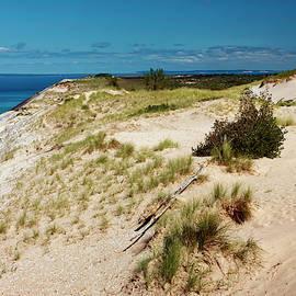 Sally Weigand - High Dune and Lake Michigan